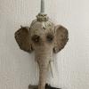 Gevaarlijk olifantje