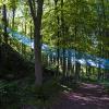 'Die Farbe Blau' Landart